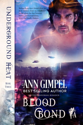 Blood Bond, Underground Heat Book Three